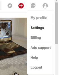How to make your Pinterest profile look more professional. Pinterest, settings.