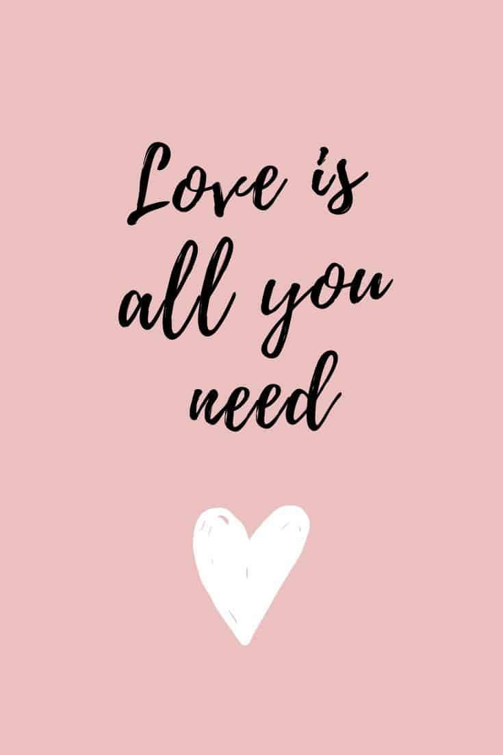 Valentine's Day quotes - Love is all you need