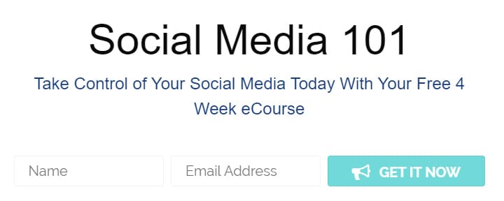 Need to get more social media followers or subscribers? Check out this FREE 4 week ecourse by The Daily Femme. Click to learn how to get more Instagram and other social media followers, or re-pin for inspo later #socialmedia #socialmediamarketing #getmorefollowers